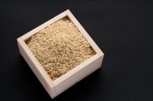 残留農薬玄米
